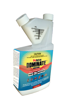 Dominate Insecticide